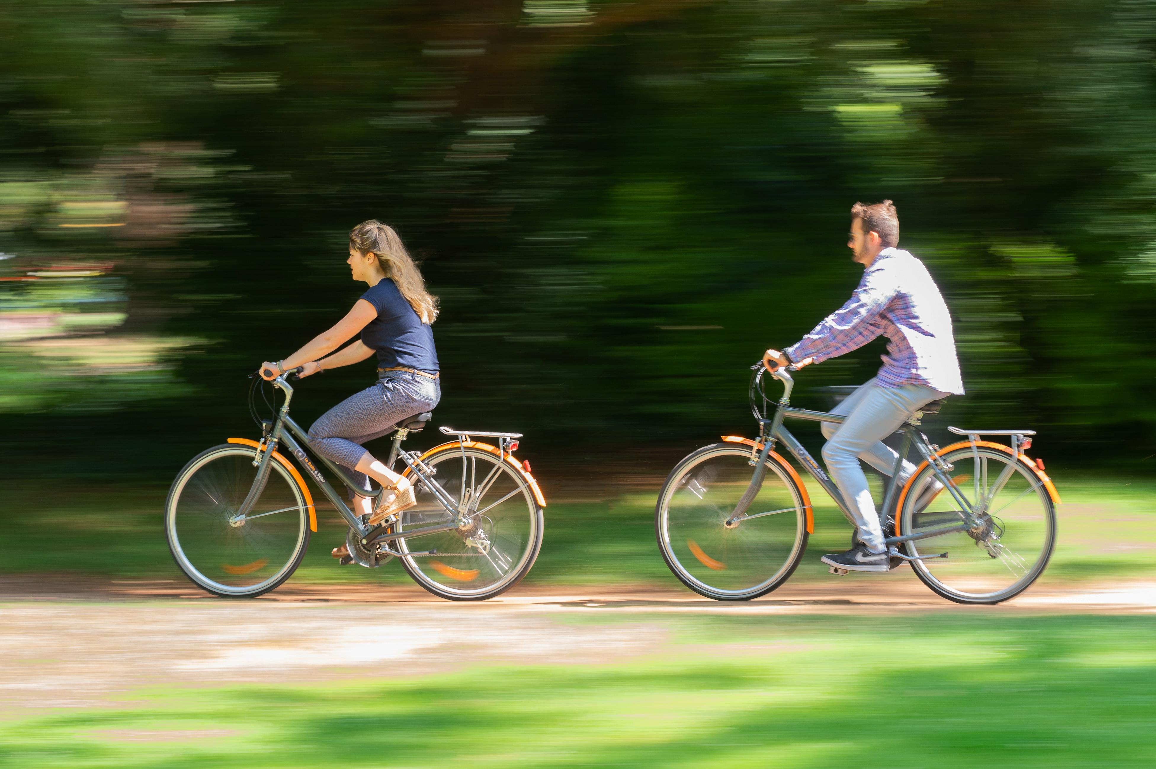 Sur les chemins... à bicyclette